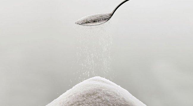 Correias transportadoras para a indústria de açúcar